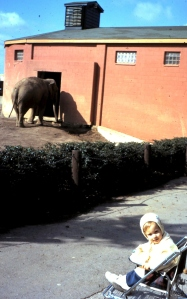 At the Columbus Zoo, 1971