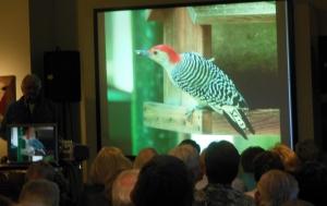 Bernard Master speaking about the Birds of Boulder Lodge
