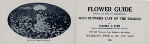 Frontispiece and title page, Flower Guide: Wild Flowers East of the Rockies, by Chester A. Reed
