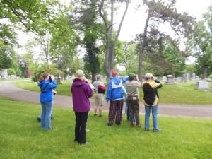 Birding at Green Lawn Cemetery