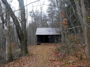 Thomas's Neotoma cabin, at Clear Creek Metro Park