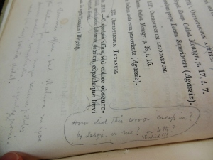 William Starling Sullivant's marginalia next to the entry for Orthotrichum Texanum, Musci boreali-americani, Ohio Historical Society Archives/Library