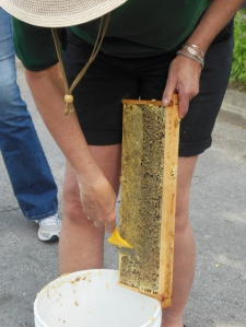 Scraping off the wax from honeycomb cells