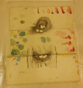 Illustrations with watercolor tests for the Illustrations of the Nests and Eggs of Birds of Ohio, H 87678, Ohio Historical Society