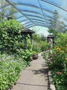 Butterfly House, Cox Arboretum MetroPark