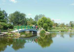 Pond, Cox Arboretum MetroPark