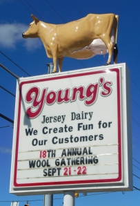 Young's Jersey Dairy sign for A Wool Gathering