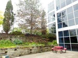 Courtyard, CCAD Canzani Center