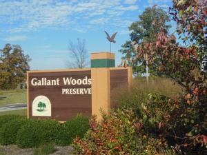 Gallant Woods Preserve