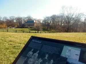 Old Orchard, Sagamore Hill