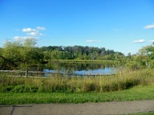 Chestnut Ridge Metro Park