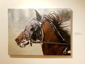 A Show of Horses