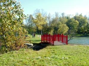 Ariel Foundation Park